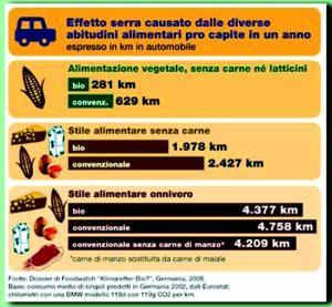 GAS Vignola - Gas vi cambia carne e inquinamento